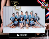 Team Photo Template Berks East  Xcel Gold