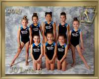 JO Level 3 Photo gold border