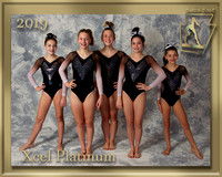 Xcel Platinum 2019 Team Photo gold border